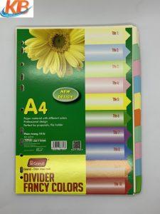 Chia flie giấy 10 màu